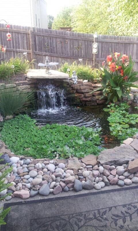 Backyard Waterscape.