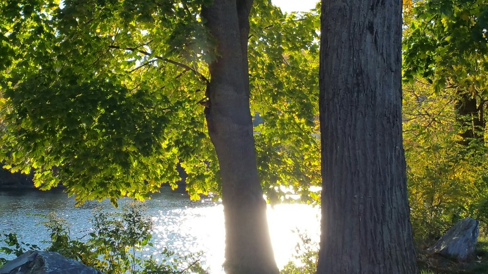 Allentown Canal Park: South Albert St, Allentown, PA