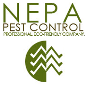 NEPA Pest Control: 836 N Irving Ave, Scranton, PA