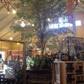 Photo Of Briggs Nursery North Attleboro Ma United States Spectacular Displays