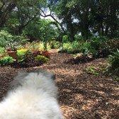 Photo Of Mead Botanical Garden   Winter Park, FL, United States. Garden Area