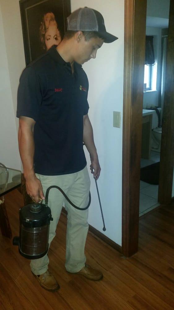Accurate Pest Management: 9344 N Travis Dr, Citrus Springs, FL