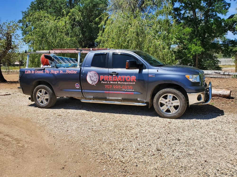 Predator Pest & Weed Management: Lower Lake, CA