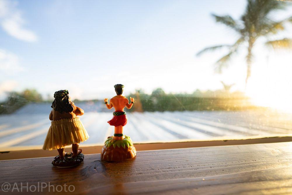 Aloha Surf Hostel
