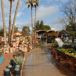 Photo Of Harlow Gardens   Tucson, AZ, United States