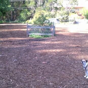 Dog Parks In Santa Cruz Ca
