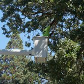 Photo Of Atlas Tree Service Concord Ca United States Long Reach