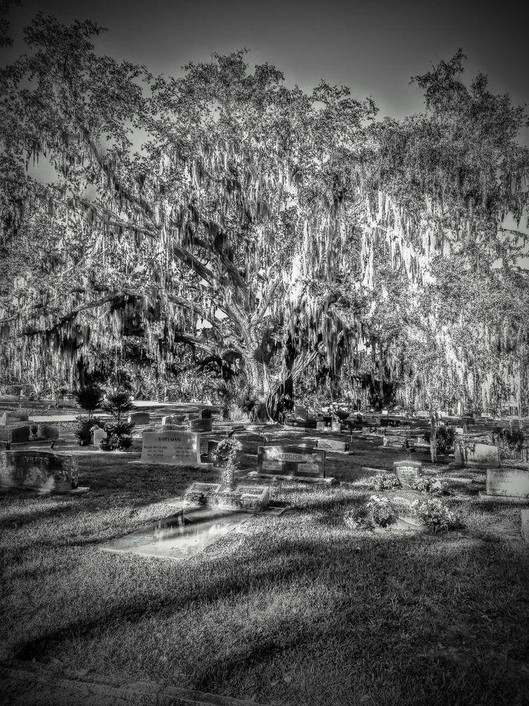 Greenwood Cemetery: 1603 Greenwood St, Orlando, FL