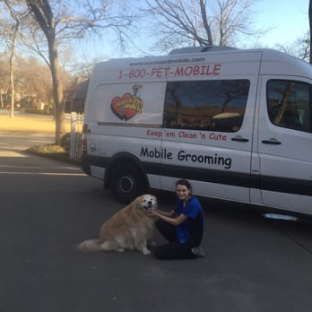 Mobile dog grooming fort worth / Sushi of gari tribeca menu
