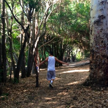 Deforest Park Nature Trail Long Beach Ca