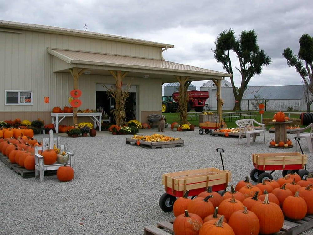 Gail's Pumpkin Patch: 1709 2000th Ave, Beason, IL