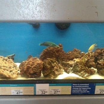 Petco 41 photos 46 reviews pet training 3890 blue for Petco tropical fish