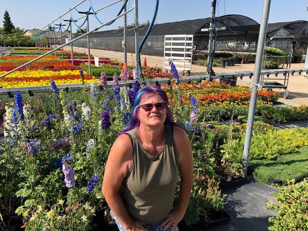 Reimer's Wholesale Nursery: 9305 Norris Rd, Bakersfield, CA