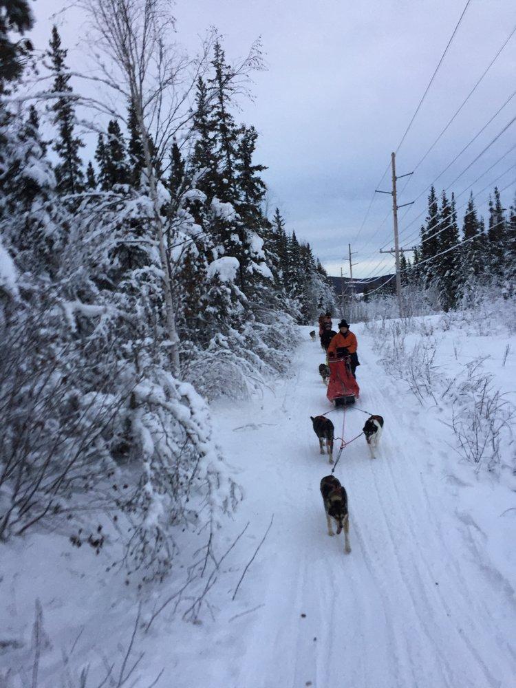 Friendly Arctic Adventures: 1105 Jure St, Fairbanks, AK