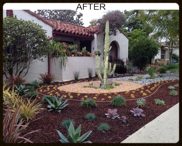after desert landscape design mulch california native