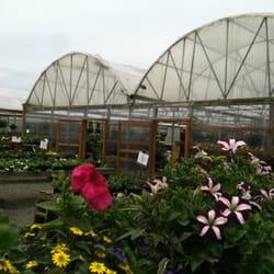 Photo Of Chapman S Greenhouse Vancouver Wa United States