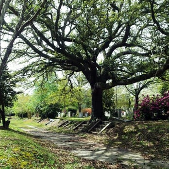 Oakdale Cemetery - Funeral Services & Cemeteries - 520 N