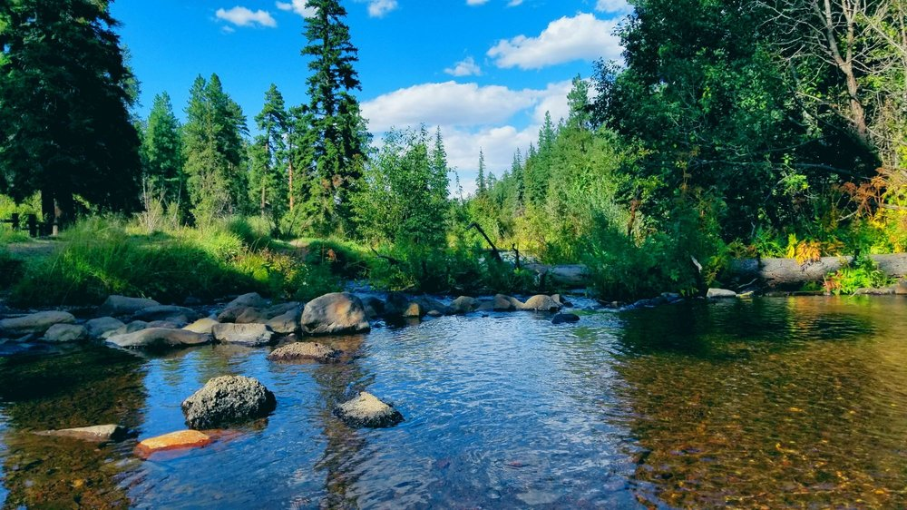 Lazy Trout Cabin Rentals: 38940 State Rt 373, Greer, AZ