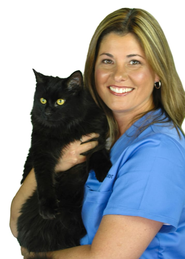 Lakeview Animal Clinic: 617 Ryan St, Pewaukee, WI