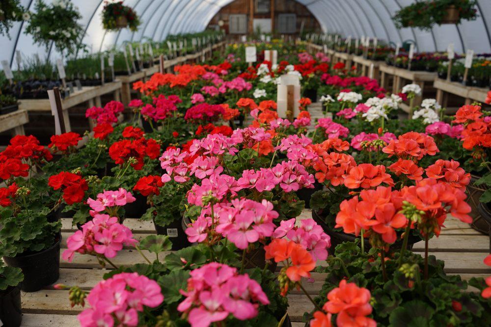 Billings Nursery & Landscaping: 7900 S Frontage Rd, Billings, MT