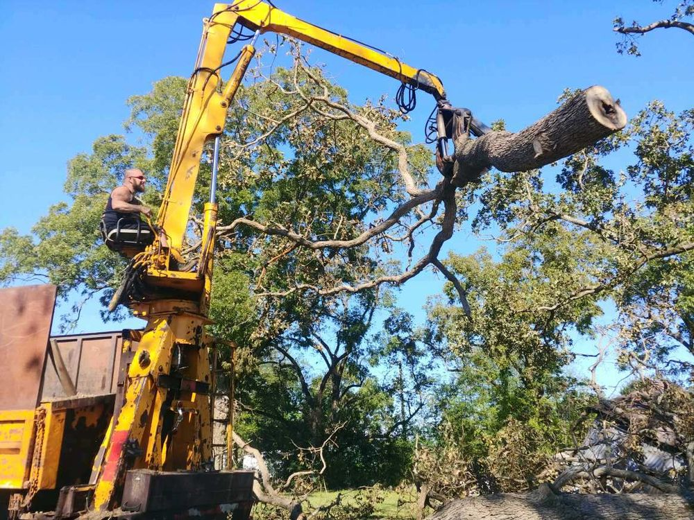 LumberJack Tree & Crane Experts: Aiken, SC