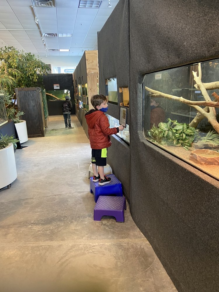 Reptile and Amphibian Discovery Zoo: 3297 N County Rd 45, Owatonna, MN