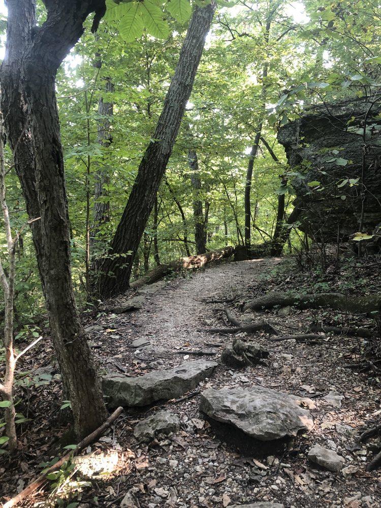 Burr Oak Woods Conservation Nature Center: 1401 NW Park Rd, Blue Springs, MO