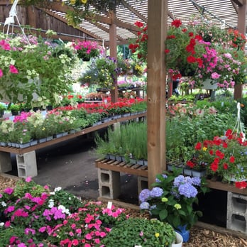 Photo Of Reynolds Farms Nurseries Norwalk Ct United States One Everything