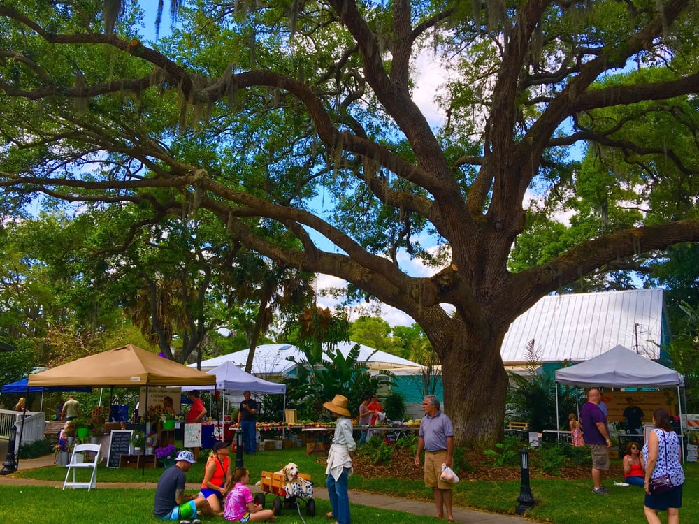 Safety Harbor Farmers Market: 401 Main St, Safety Harbor, FL