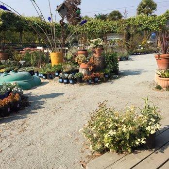 Sierra Azul Nursery Garden 39 Photos 25 Reviews Garden Centres 2660 E Lake Ave