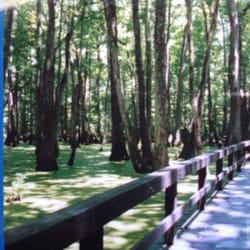 po of sierra national forest clovis ca united states