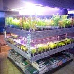 strijker aquarium zoohandlung tierbedarf beijerlandselaan 43 b rotterdam zuid holland. Black Bedroom Furniture Sets. Home Design Ideas
