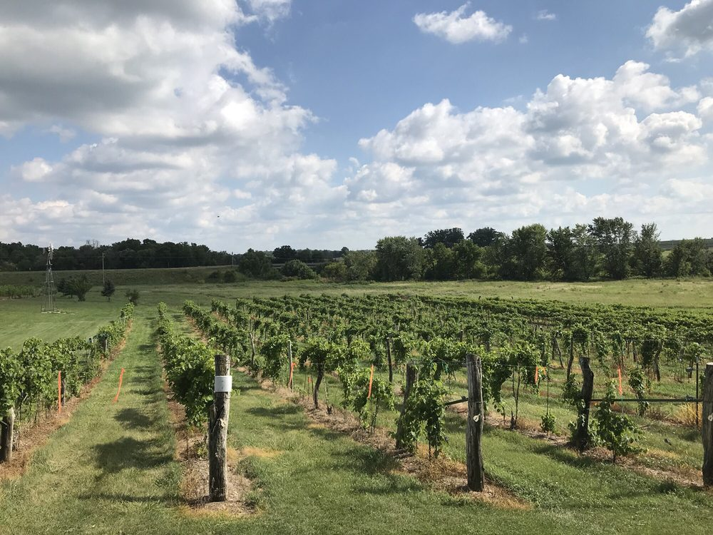 Cedar Valley Winery: 2034 Dewberry Ave, Batavia, IA
