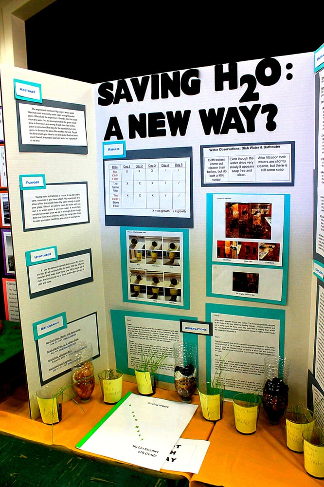 Example Of A Science Fair Project Yelp