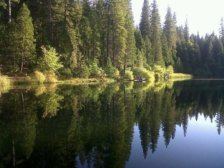 Sharon Findley-Tussy - Cedar Creek Realty: 1332 Oak Ct, Arnold, CA
