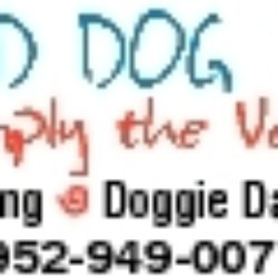Hound Dog Pet Hotel And Spa