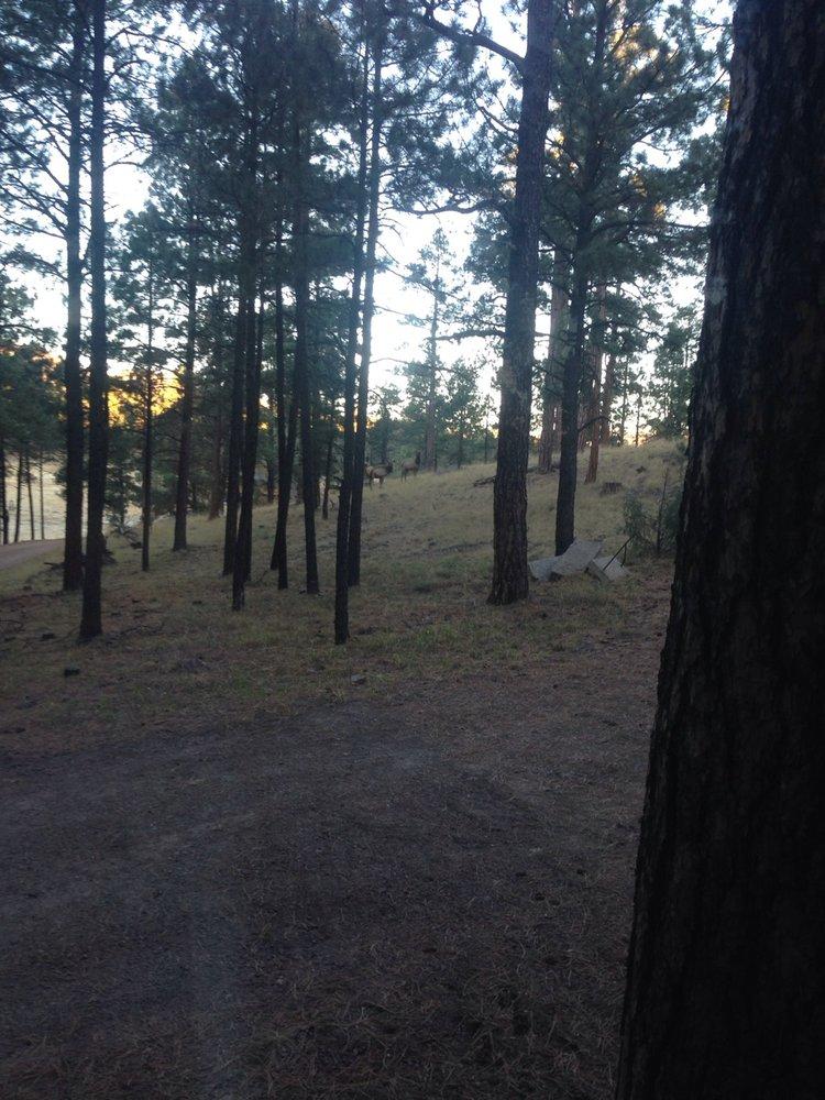 Cow Camp Cabins: 42874 E Hwy 180, Alpine, AZ