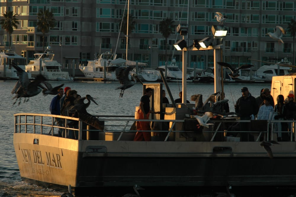 Returning from a fishing trip yelp for Marina del rey fishing report