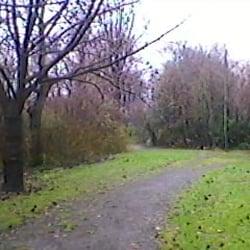 parc des franciscaines parcs rue du g 233 n 233 ral de gaulle mons en barœul nord yelp