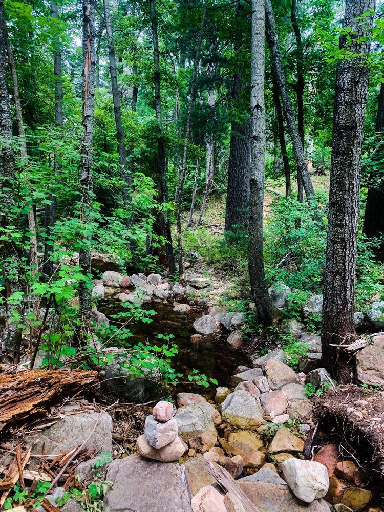 See Canyon Trail: Nf-284, Payson, AZ