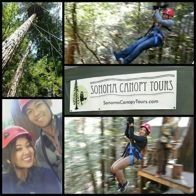 Sonoma Canopy Tours zipline