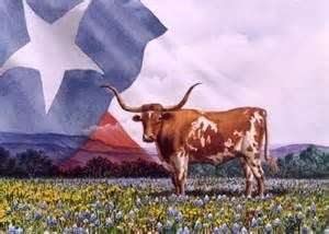 Bluebonnet Art Gallery & Framing