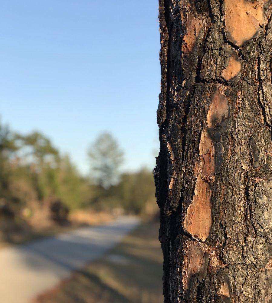 Social Spots from Jay B Starkey Wilderness Park