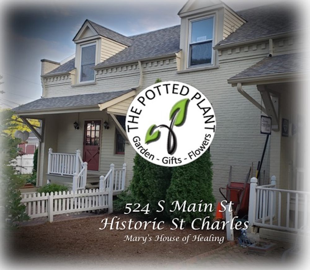 The Potted Plant: 524 S Main St, Saint Charles, MO