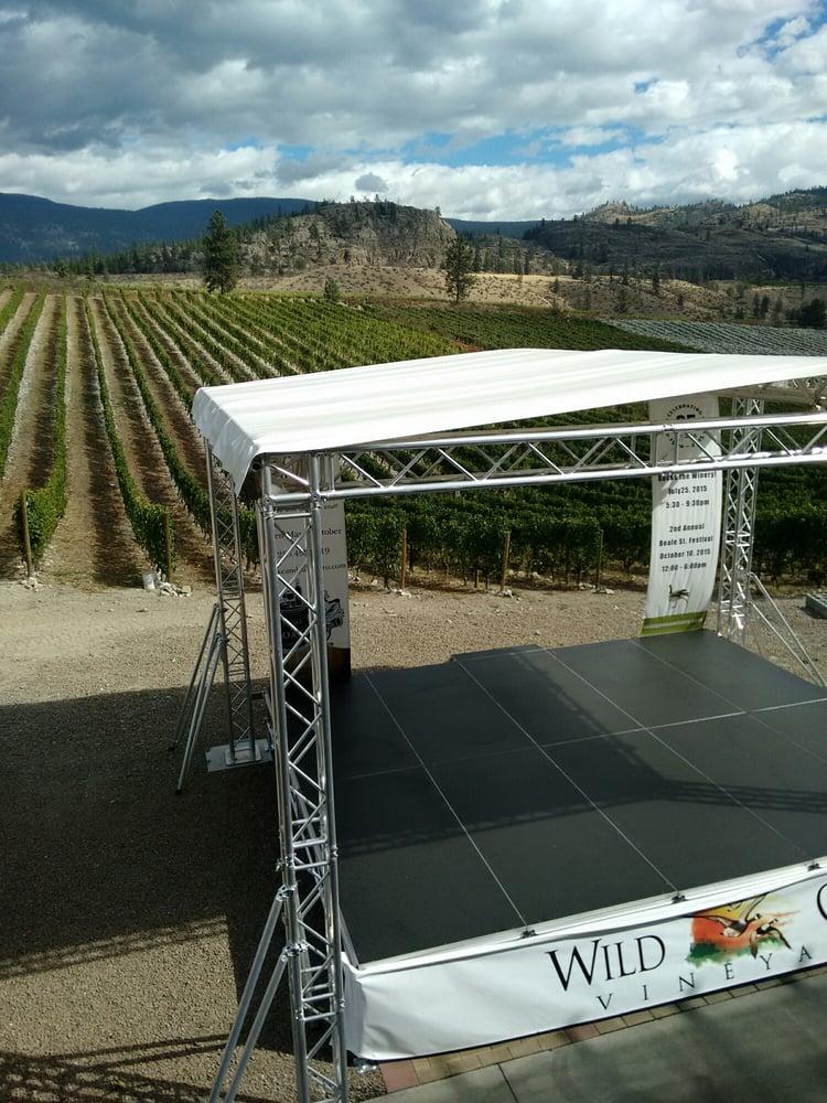Wild goose vineyards 20 foto aziende vinicole 2145 for Affitti di cabina okanagan bc