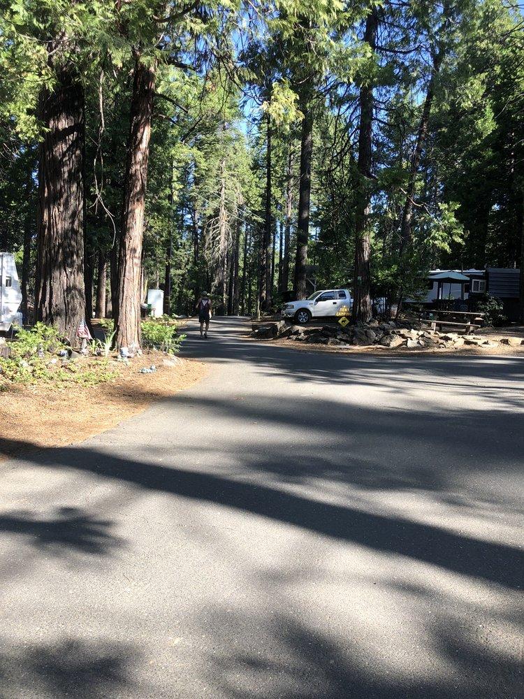 Golden Pines RV Resort & Campground: 2869 Golden Torch Rd, Camp Connell, CA