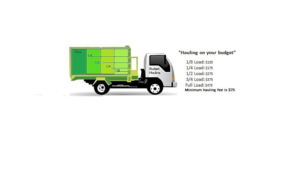 Budget hauling junk removal hauling 3333 rainer ave for Furniture removal seattle