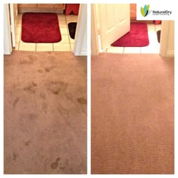 Naturaldry carpet cleaning 175 photos 38 reviews home cleaning photo of naturaldry carpet cleaning las vegas nv united states las vegas solutioingenieria Image collections