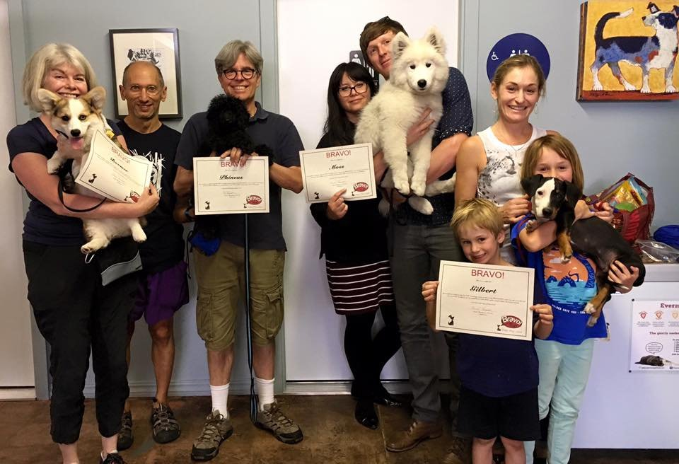 Bravopup Puppy and Dog Training: Northbrae Community Church, Berkeley, CA