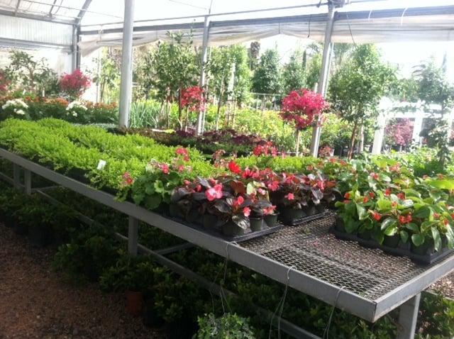 Garden Expo Inc: 1221 W 20th St, Houston, TX